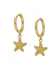 Pendientes Aro y Estrella...