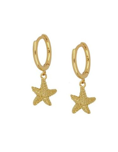 Pendientes Aro y Estrella de Mar